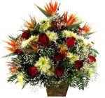Ouro Preto Mg Floricultura Flores Enviar flores online presente flores Mandar Flores Flora flores online entrega cesta de café da manhã coroas de flores Ouro Preto Mg