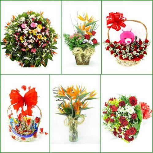 Sarzedo Mg Floricultura online Sarzedo flores online Sarzedo cestas de café da manhã Sarzedo buquê de rosas Sarzedo orquídeas coroas de flores Sarzedo Mg Flora Savassi uma empresa que há 35 anos 201047