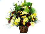 Moeda Mg floricultura flora flores cestas de café da manhã buquê de rosas ikebanas orquídeas cestas de aniversário cestas de casamento nascimentos cestas de flores Moeda Mg  Floricultura