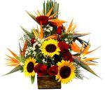 Mariana Mg floricultura flora flores cestas de café da manhã buquê de rosas ikebanas orquídeas cestas de aniversário cestas de casamento nascimentos cestas de flores Mariana Mg  flor