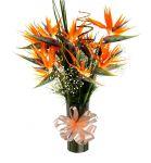 Prudente de Morais Mg floricultura flora flores cestas de café da manhã buquê de rosas orquídeas cestas de aniversário cestas de casamento nascimentos cestas de flores Prudente de Morais Mg