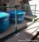 Alambrado Conhecida também como Tela Losangular e Tela Caracol.