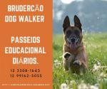 Dog Walker São José dos Campos Brudercão