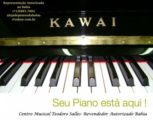 Aluguel Ou Locação de Pianos de Cauda em Salvador Bahia 14433