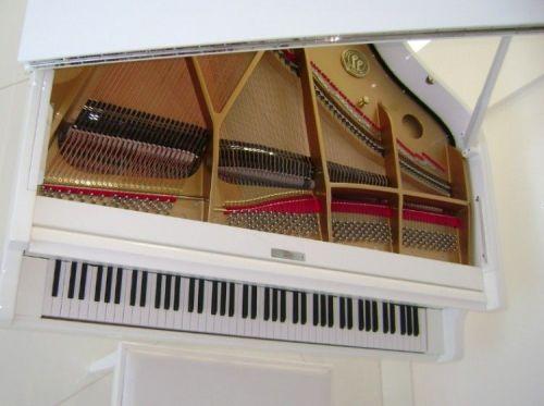 Aluguel Ou Locação de Pianos de Cauda em Salvador Bahia 14434