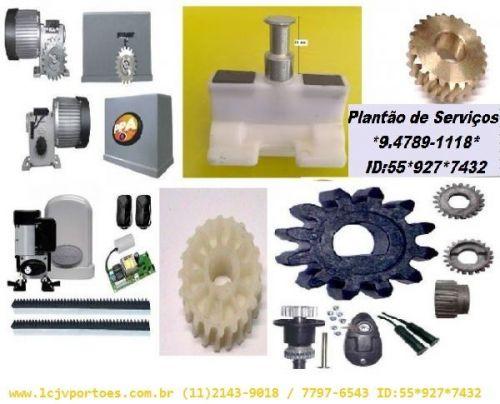 Conserto de Portão Automático PPA 182458