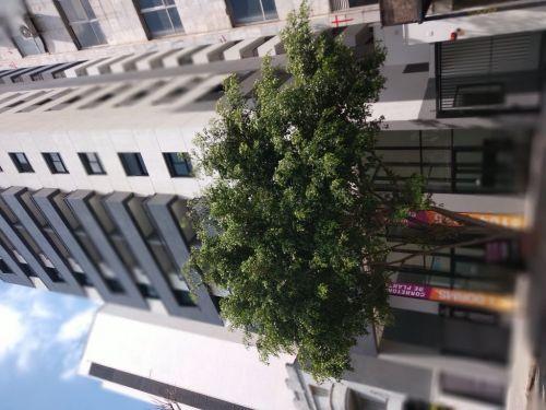 Apartamento Centro- São Paulo - My Space Bela Vista 523112