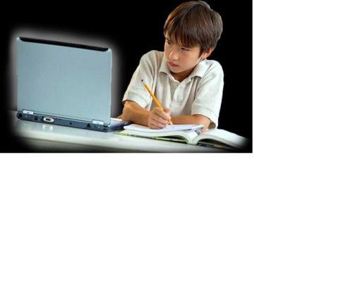 Aulas Particulares Online ou presencial e Preparação para Concursos Online  ou presencial 546704