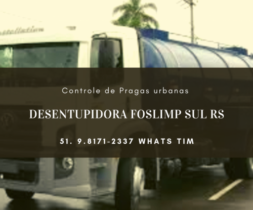 Controle de Pragas em Porto Alegre e Regiões do Rs 563964