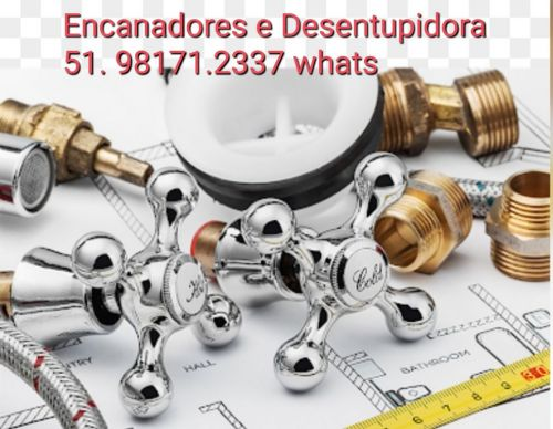 Controle de Pragas em Porto Alegre e Regiões do Rs 563970