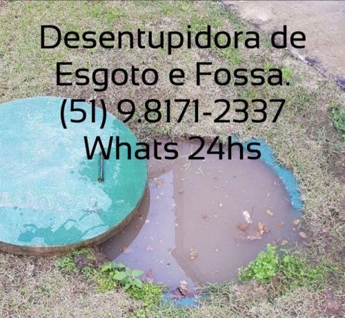 Controle de Pragas em Porto Alegre e Regiões do Rs 563973