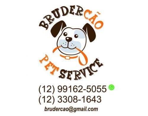 Dog Walker São José dos Campos 498199