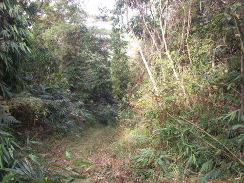 Fazenda Curukrutu 30.000mtssão Paulo. 377304