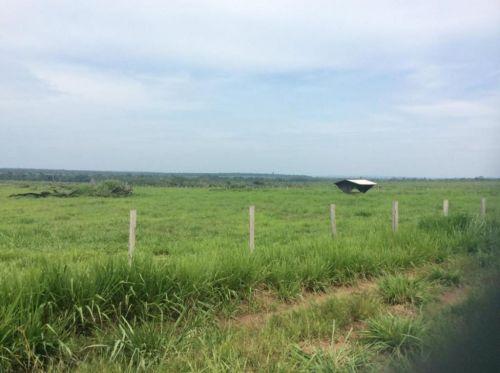 Fazenda   Em  Juína Mt    Venda    Excelente  investimento 436568