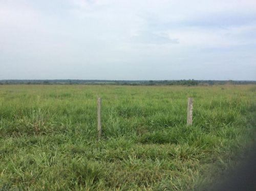 Fazenda   Em  Juína Mt    Venda    Excelente  investimento 436569
