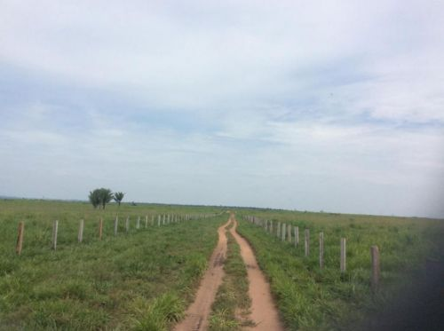 Fazenda   Em  Juína Mt    Venda    Excelente  investimento 436572