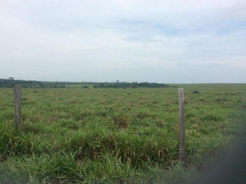 Fazenda   Em  Juína Mt    Venda    Excelente  investimento 436573
