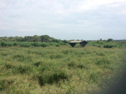 Fazenda   Em  Juína Mt    Venda    Excelente  investimento 436574