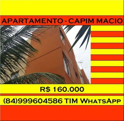 Natal Capim Macio 160.000 R$ 312722