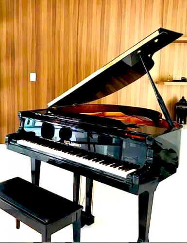 Piano Fritz Dobbert excelente qualidade 518526