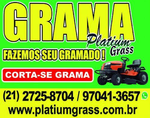 Grama esmeralda Grama Zeon Grama São Carlos Promoção.... 354299