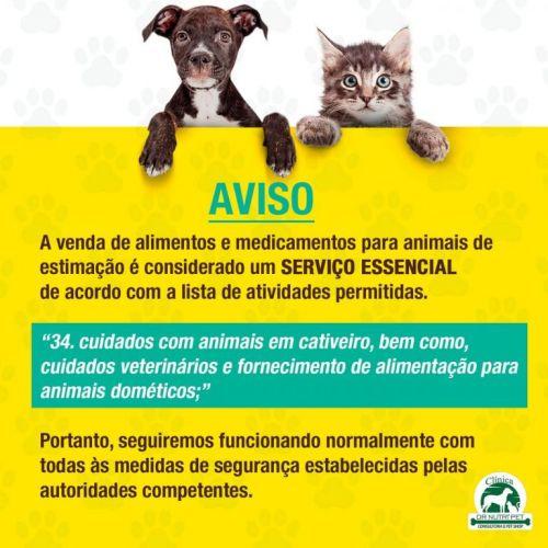 Serviço Veterinário em Ananindeua  549607