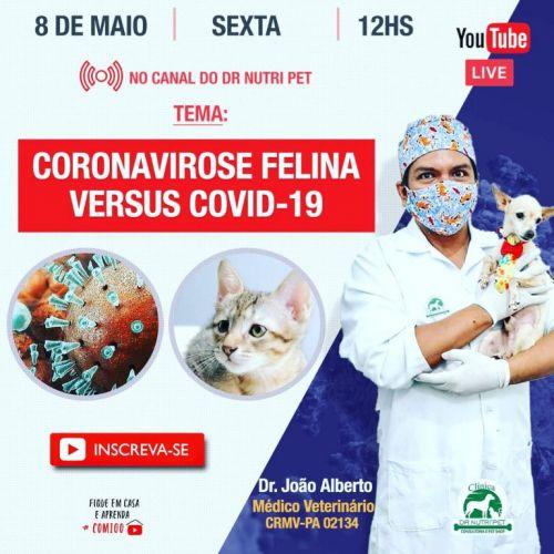 Serviço Veterinário em Ananindeua  549609