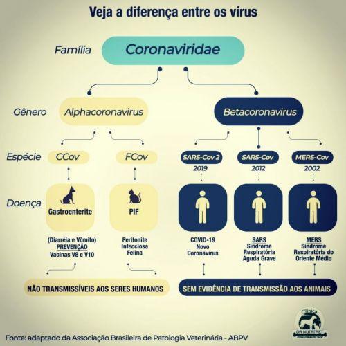 Serviço Veterinário em Ananindeua  549610