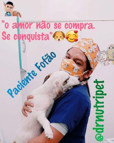 Serviço Veterinário em Ananindeua  549611