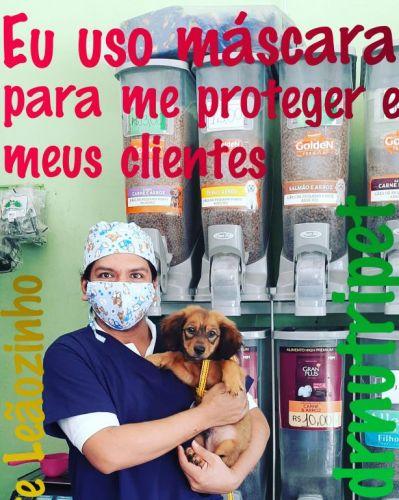 Serviço Veterinário em Ananindeua  549613