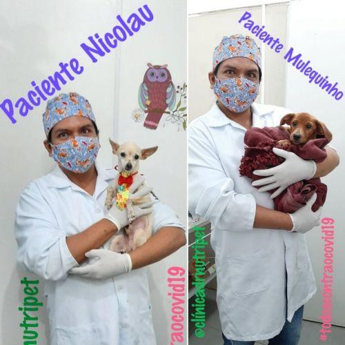 Serviço Veterinário em Ananindeua  549614