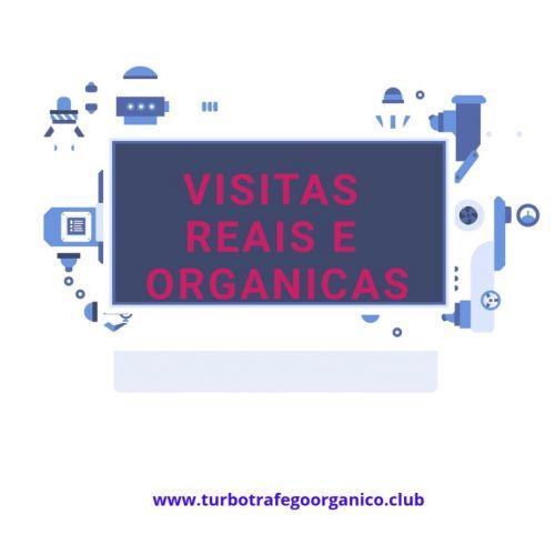 Turbo tráfego Orgânico Ultimate Visitas Massivas Para Sua Loja Virtual e Blog 395180